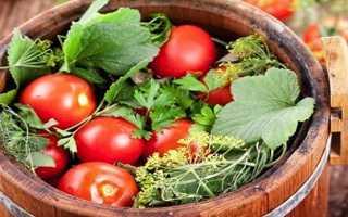 Бочковые помидоры с горчицей
