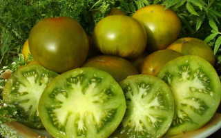 Томат изумрудное яблоко отзывы фото урожайность