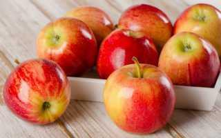 Как сделать пастилу из яблок без сахара