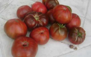 Томат арбузный отзывы фото урожайность