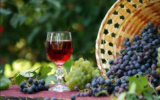 Сорт винограда молдова для вина