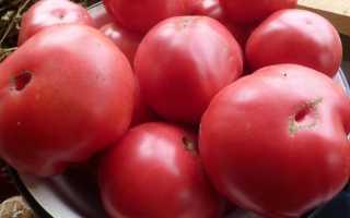 Сорт помидора шапка мономаха