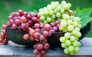 Можно ли кушать виноград при диете