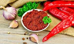 Аджика абхазская амца рецепт