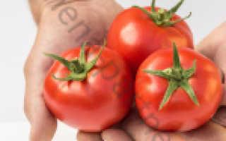 Семена томатов любаша купить в москве