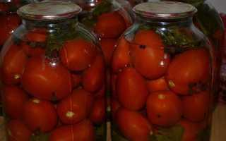 Соленые помидоры без уксуса на зиму