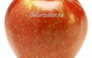 Сколько калорий в свежем яблоке