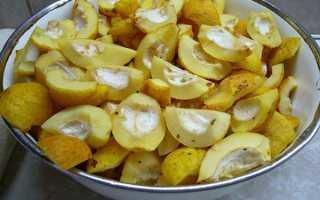 Айва декоративная рецепты приготовления