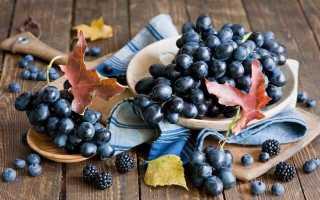 Виноград кубанский описание сорта фото