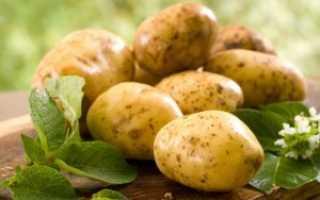 Как правильно удобрять картофель
