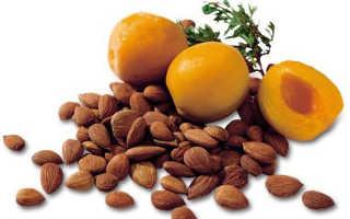 Полезные свойства абрикосовых косточек для человека
