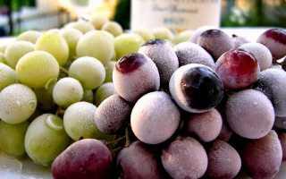 Заморозка винограда в морозильной камере