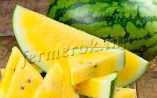 Арбуз с желтой мякотью фото