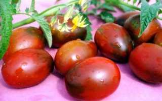 Сорт помидоров де барао черный