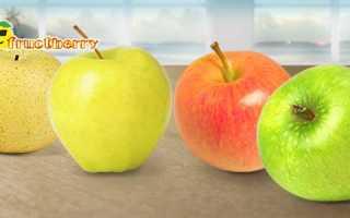 Сколько калорий в яблоке сезонном