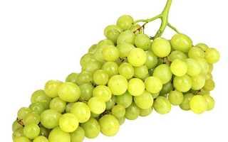 Виноград тайфи с косточками или без