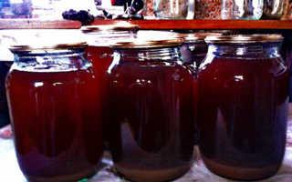 Как сделать виноградный сок на зиму