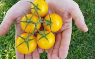 К чему снятся желтые помидоры женщине