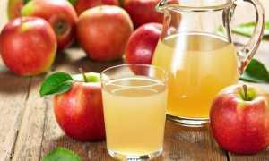 Сколько варится яблочный компот