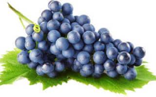 Как приготовить домашнее вино из синего винограда