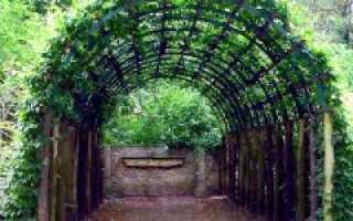 Арки для винограда из арматуры