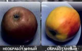 Восковой налет на яблоках