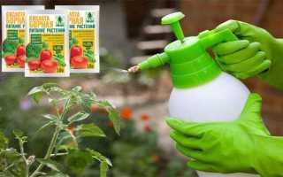 Опрыскивание помидоров борной кислотой для завязи