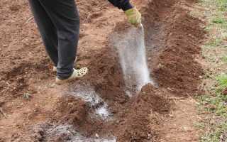 Удобрения при посадке картофеля весной