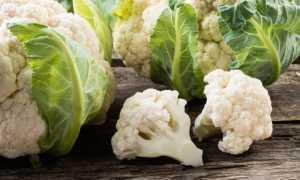 Сколько варить цветную капусту перед заморозкой