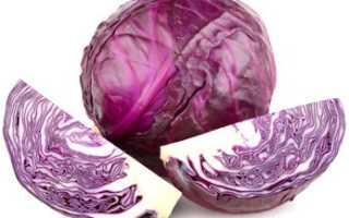 Капуста фиолетовая полезные свойства