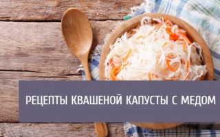 Как засолить капусту с медом быстро