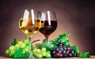 Технология производства домашнего вина из винограда