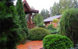 Дом сад огород ландшафтный дизайн