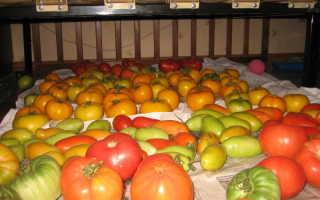 Лежкие сорта томатов для теплиц