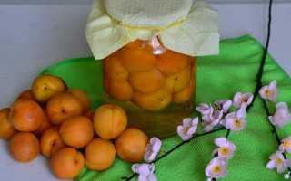 Компот из абрикос на зиму без стерилизации