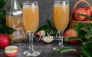 Как сделать сидр из яблок в домашних