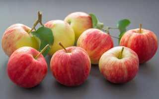 Сколько яблок можно съедать в день ребенку