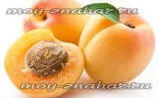 Лечение абрикосовыми косточками отзывы