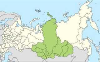 Томат покоритель севера характеристика и описание сорта