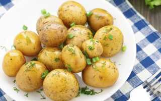 Картофель отварной химический состав