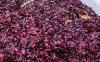 Как сделать вино из отжимок винограда