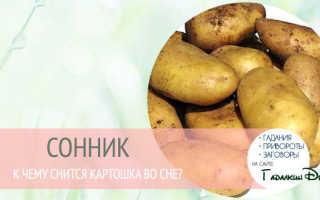 К чему снятся картофельные очистки