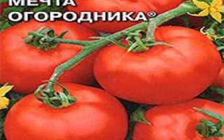 Сорт томата мечта огородника