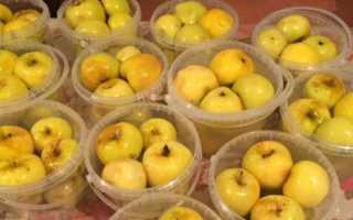 Как хранить моченые яблоки в квартире